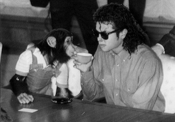 cimpanzeu