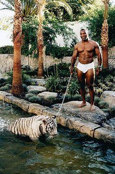 mike tyson tigre
